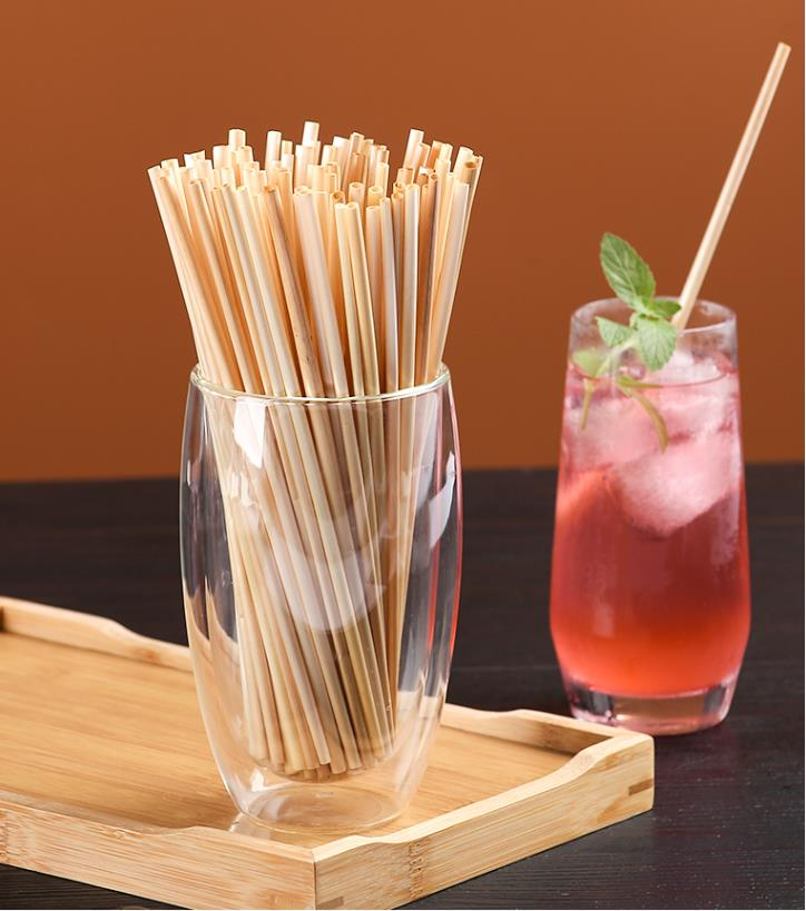 Eco friendly drinking straws